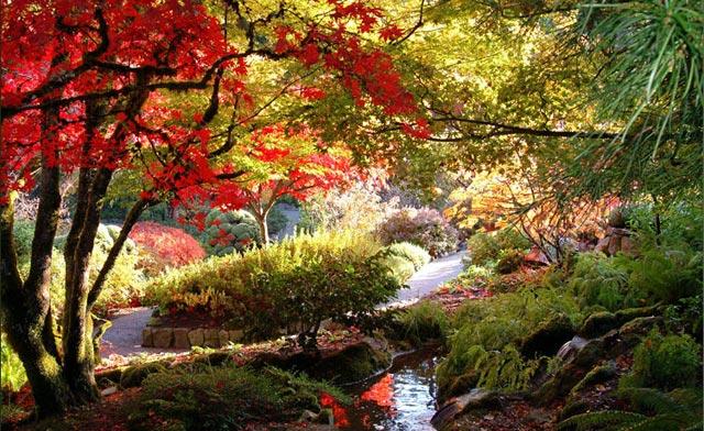 زیباترین و بزرگترین باغ گل دنیا Butchart Garden