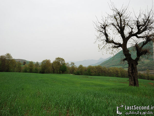 شمال ایران
