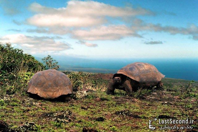 جزایر گالاپاگوس